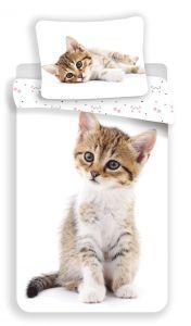 Obliečky fototlač Kitten white